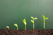 商務 成長率 : 黒板の前にある新しい