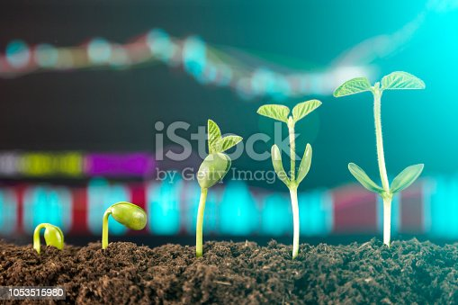 istock bussiness investment:coin growing in soil on green background 1053515980