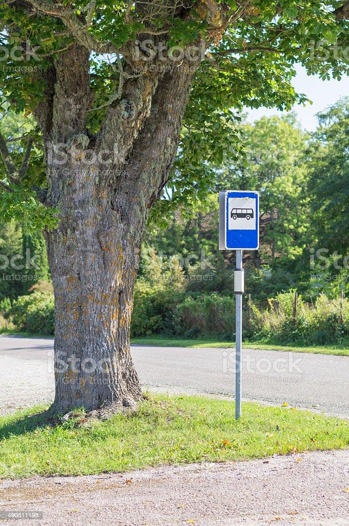 Busstop Melden Sie sich unter malerischen maple tree – Foto