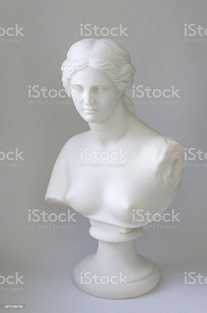 bust of Aphrodite stock photo