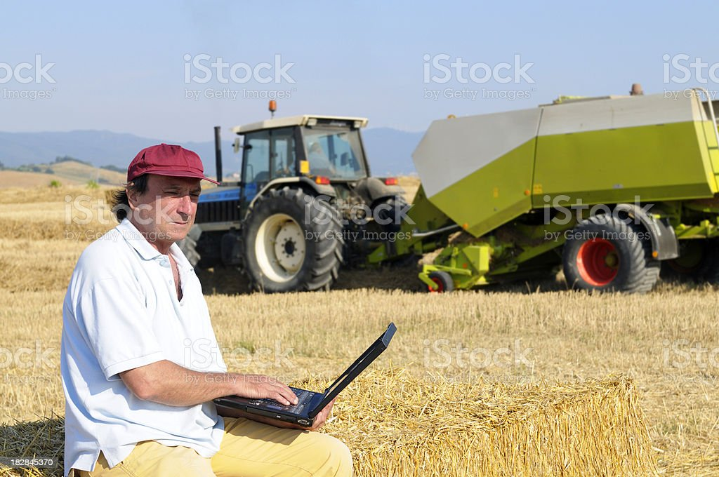 Busy Farmer with Laptop in a Wheat Field royalty-free stock photo