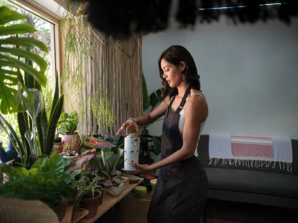 Busy female employee working with plants in a garden shop A horizontal image of a concentrated female small business owner working on a changing a plant to another pot while standing in a garden shop. medium shot stock pictures, royalty-free photos & images