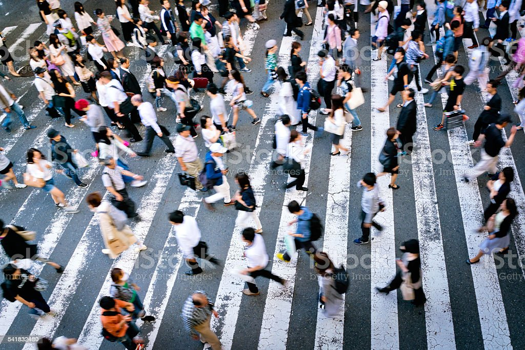 busy Zebra crossing stock photo