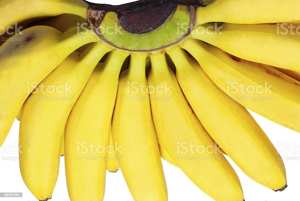 Butch of small bananas. royalty-free stock photo