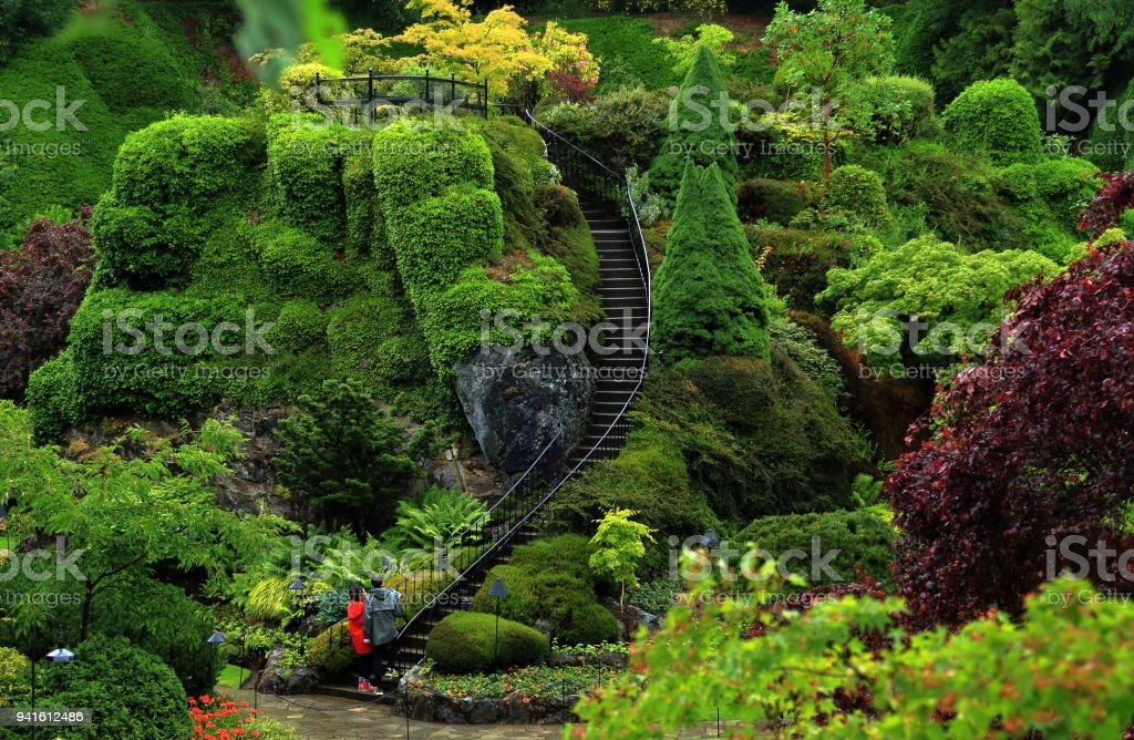 Butchart Gardens in the rainy day. stock photo