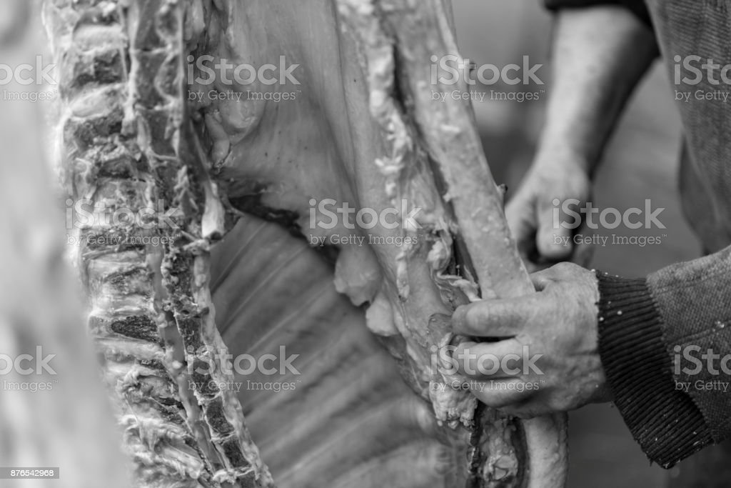Butcher cuts the pig carcass by knife, Ukraine stock photo