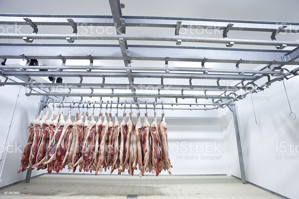 Butcher products stock photo