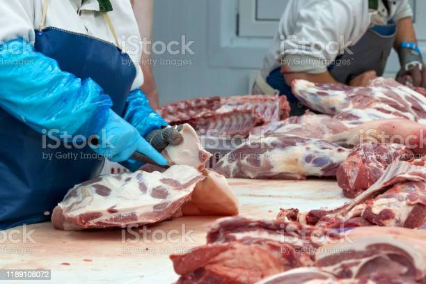 Butchers Are Cutting Pork In The Meat Plant Stock Photo - Download Image Now