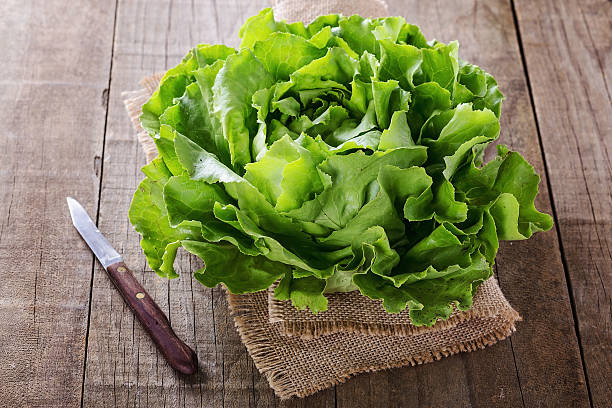 Butter lettuce over wooden rustic background Single organic butter lettuce head over wooden rustic background butterhead lettuce stock pictures, royalty-free photos & images