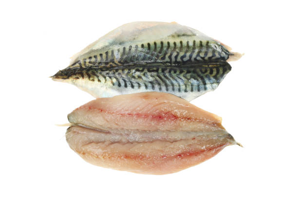 Butterflied mackerel fillets Two raw butterflied mackerel fillets isolated against white oily fish stock pictures, royalty-free photos & images