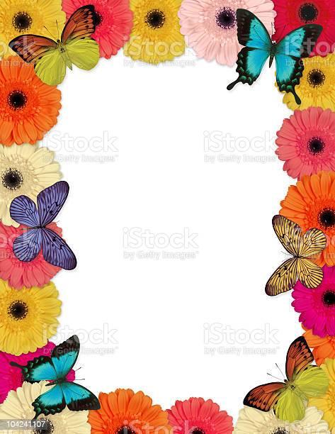 Butterflies amp daisies frame picture id104241107?b=1&k=6&m=104241107&s=612x612&h=82zcy5rqshusmxwmgdkex383uscrbmo5z5khusbqz0i=