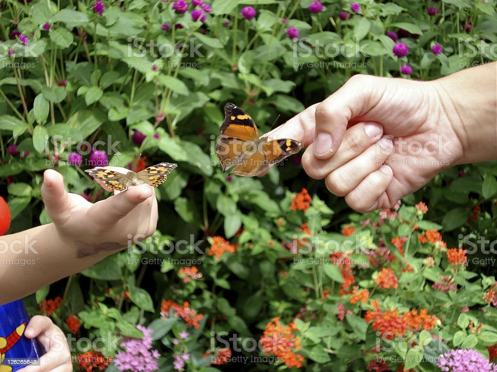 Butterflies connecting generations (father and child) royalty-free stock photo