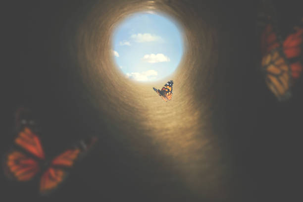 butterflies fly out of a dark tunnel in search of freedom stock photo