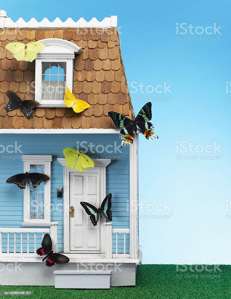 Butterflies on model house, close-up royalty-free stock photo