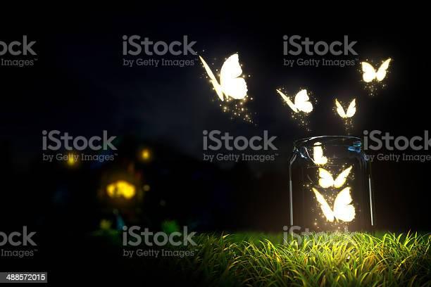 Butterflies picture id488572015?b=1&k=6&m=488572015&s=612x612&h=utuna7dsgs4bzcghuciunccdy8flxjp a7qv2 h28oc=