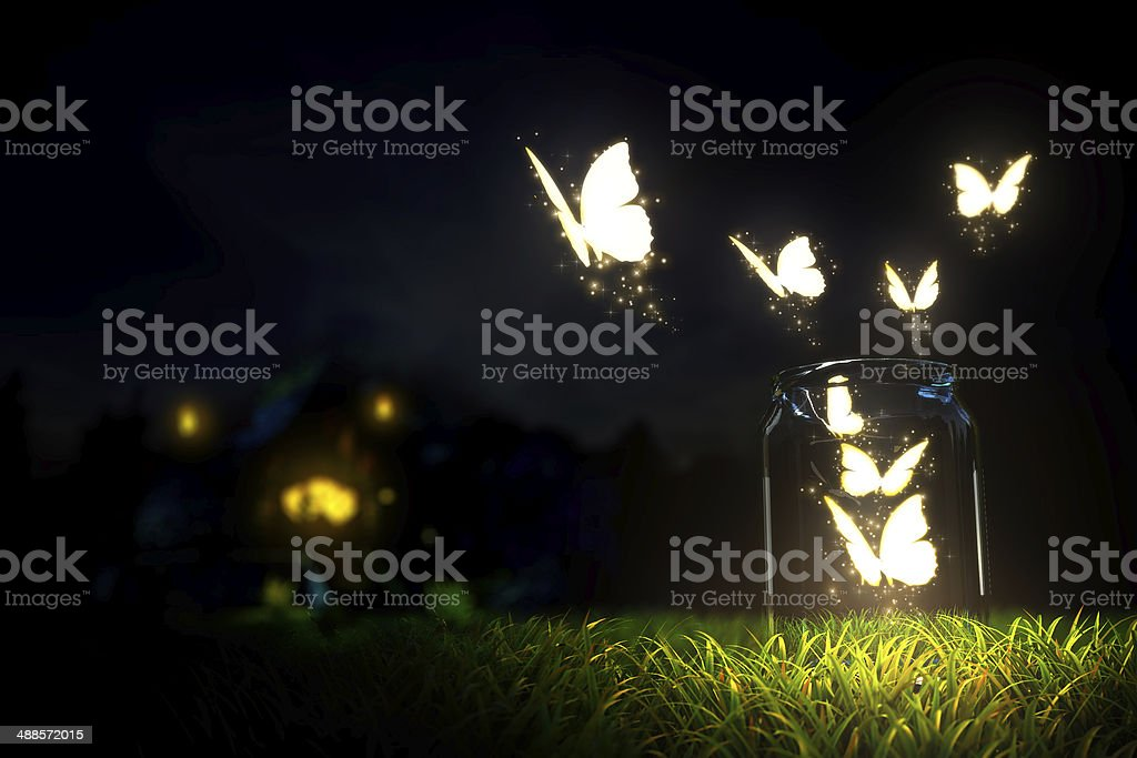 Butterflies stock photo