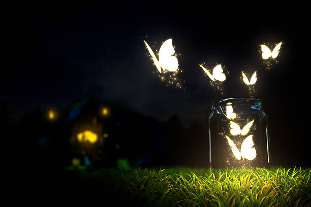 butterflies - paranormal stock photos and pictures