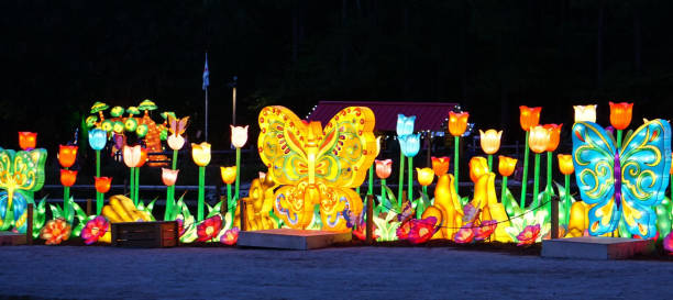 A Butterfly and Flower Display with lights stock photo