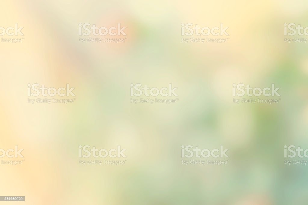 Butterfly cream color tone and  blossom background, motion blur stock photo