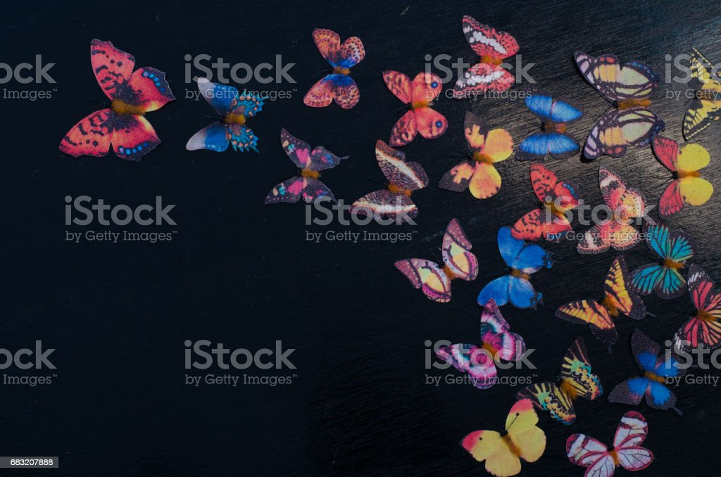 Butterfly decoration on the black wooden background, still life butterfly royalty-free 스톡 사진