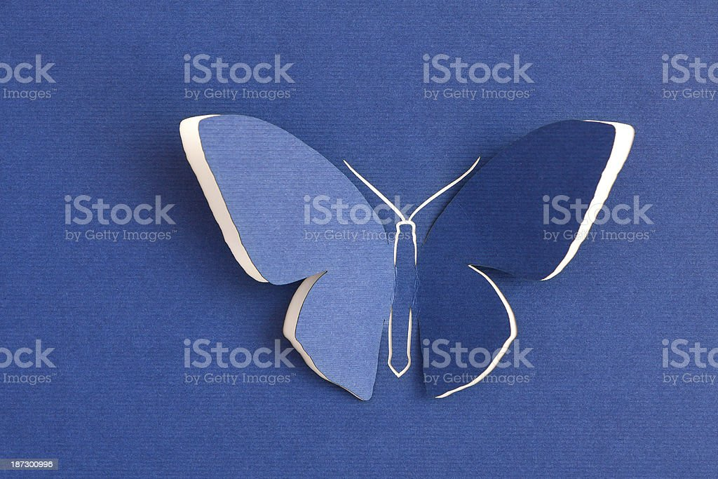 Butterfly decorative royalty-free stock photo