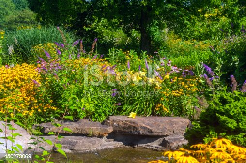 Butterfly garden with cutleaf coneflowers and butterfly bush and water decor