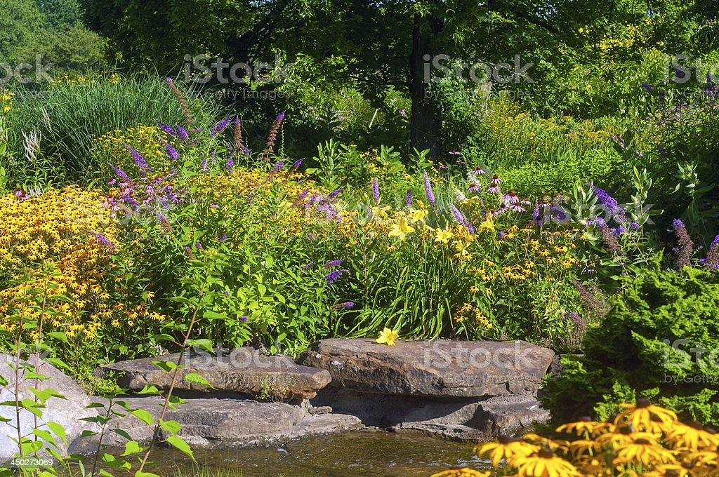 Butterfly garden stock photo