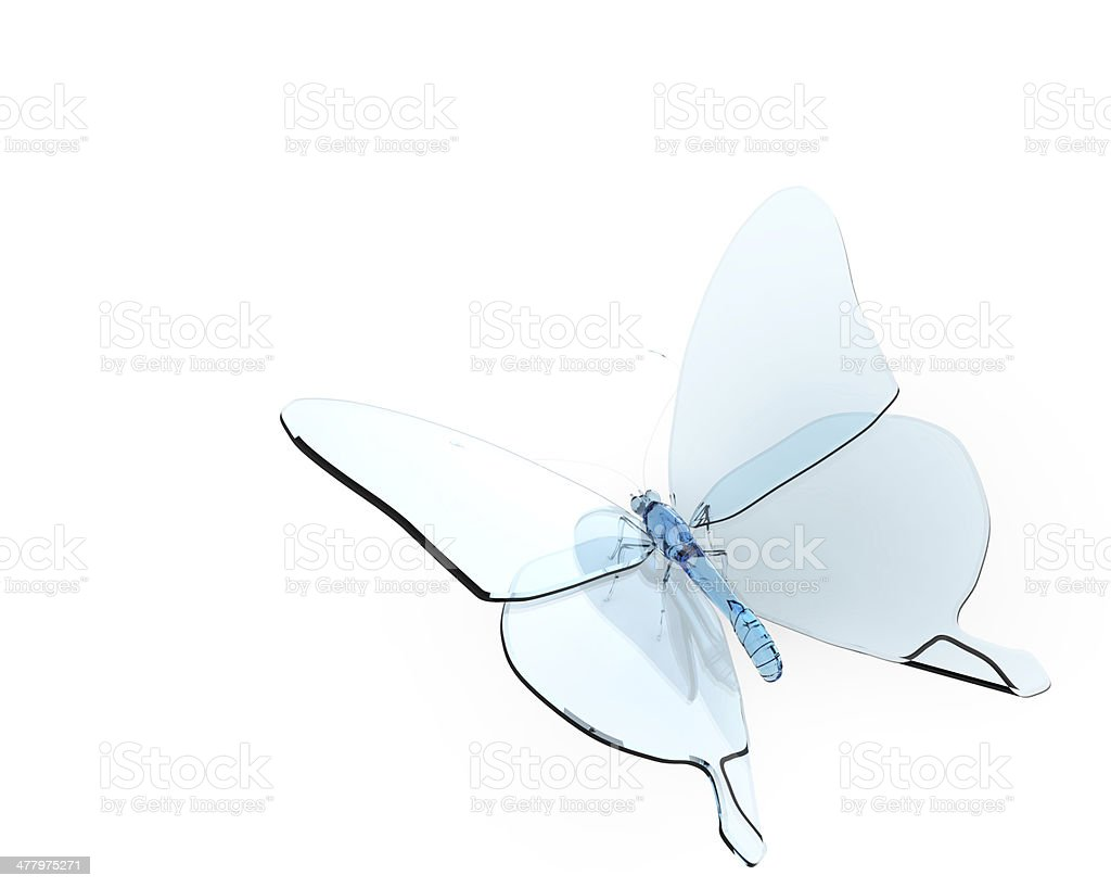 Butterfly glass royalty-free stock photo