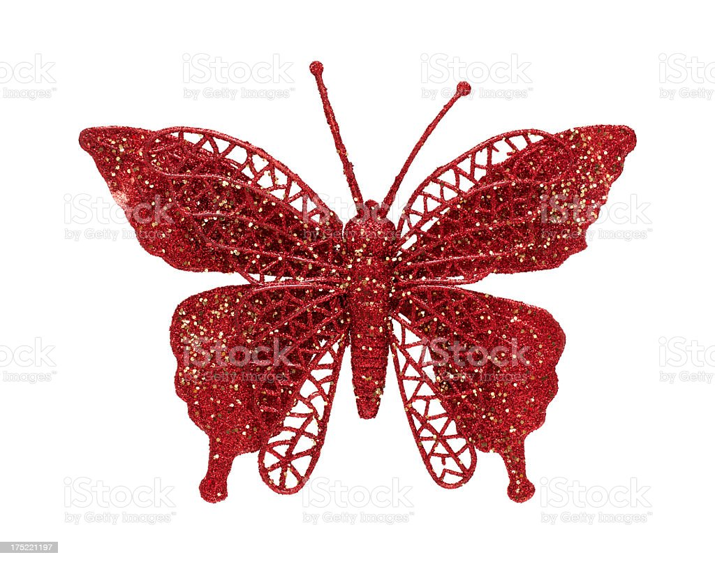 Butterfly isolated on white background royalty-free stock photo