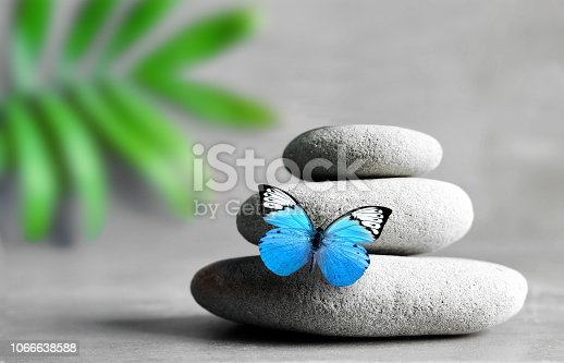Butterfly, light and balanced stones. Palm leaf. Zen and spa concept