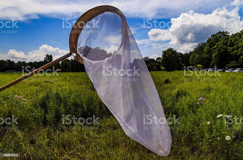 Butterfly net Catching butterfles in the medows with butterfly net. blue sky and white clouds in the background. 2015 Stock Photo