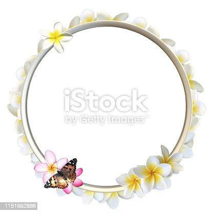 Vast variety of flower designs and more in my portfolio