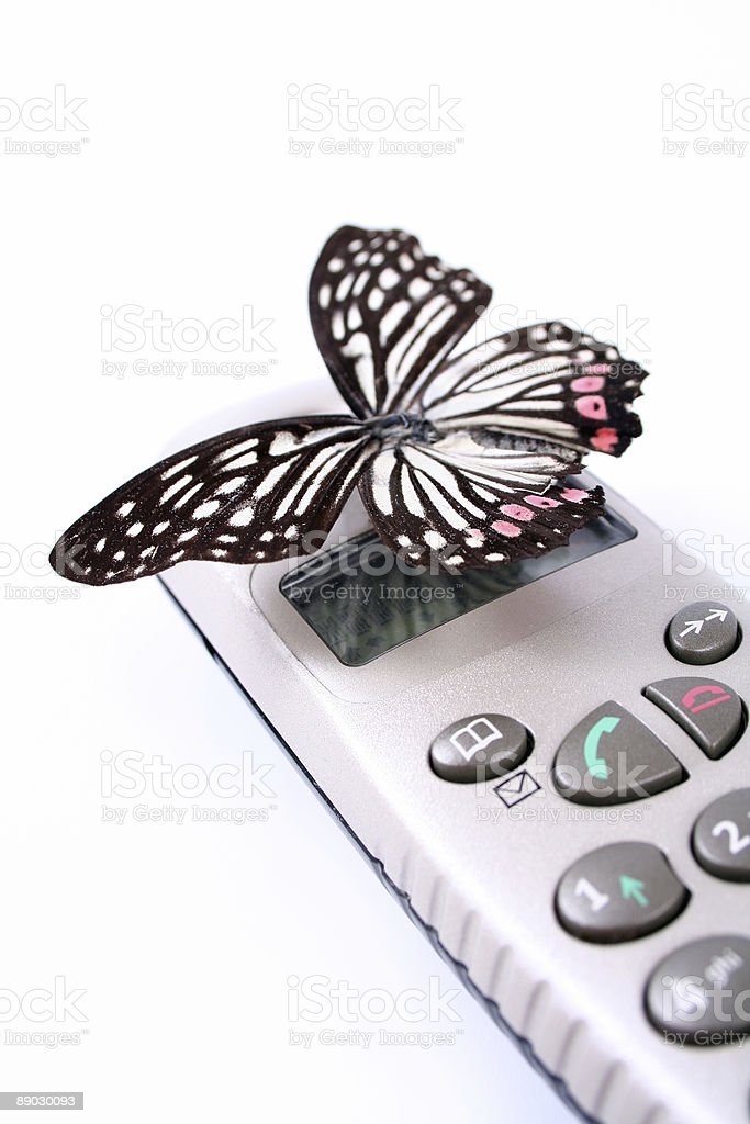 Butterfly on telephone royalty-free stock photo