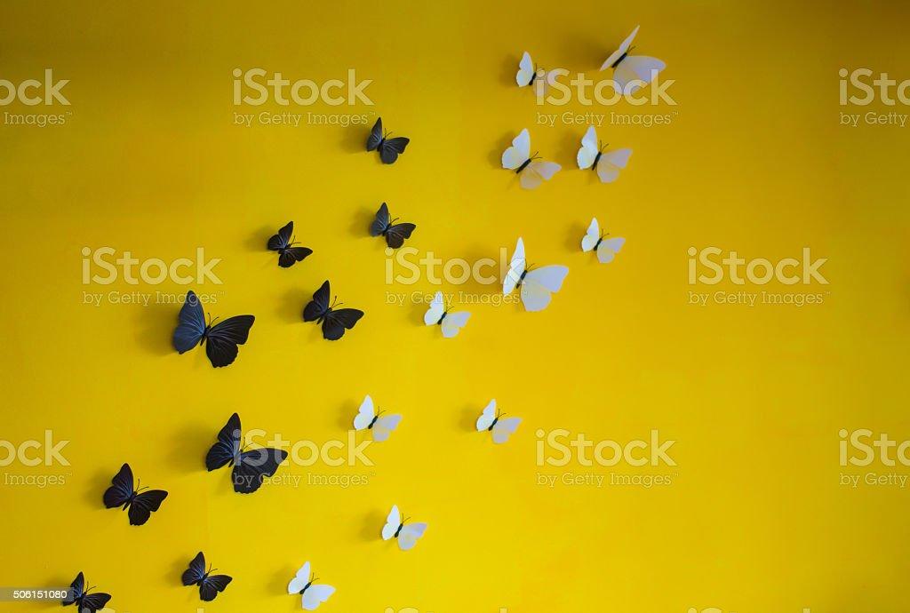 Schmetterling auf der Wand – Foto