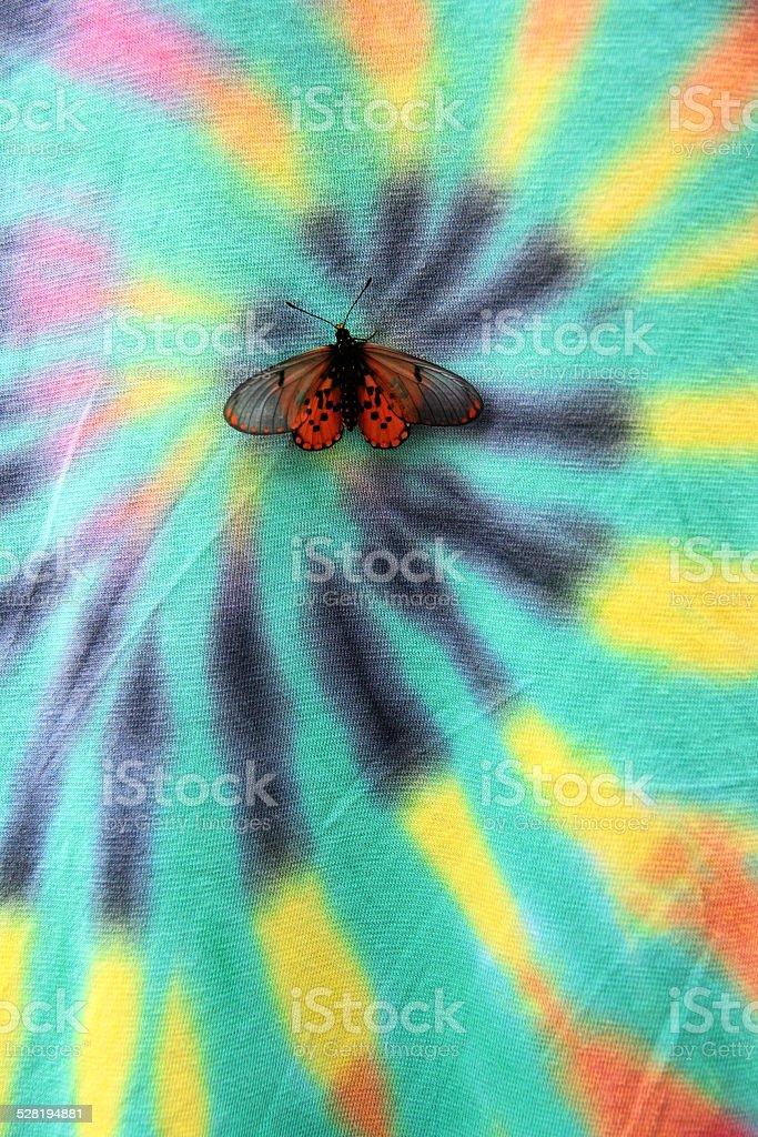 Butterfly on Tie Dye stock photo