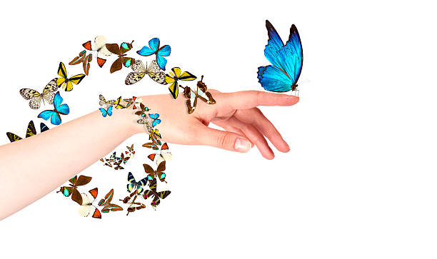 Butterfly on womans hand in motion picture id462314255?b=1&k=6&m=462314255&s=612x612&w=0&h=lx8imkbptlllmxj5yjx2ysbcjdgfi4djy 0ddcxgg8w=