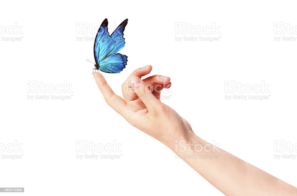 butterfly on woman's hand. In motion royalty-free stock photo