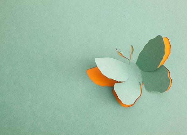 Butterfly origami picture id178484966?b=1&k=6&m=178484966&s=612x612&w=0&h=y xotsl2v8rjvb5coypkdqlzxznogazffzemvd piem=
