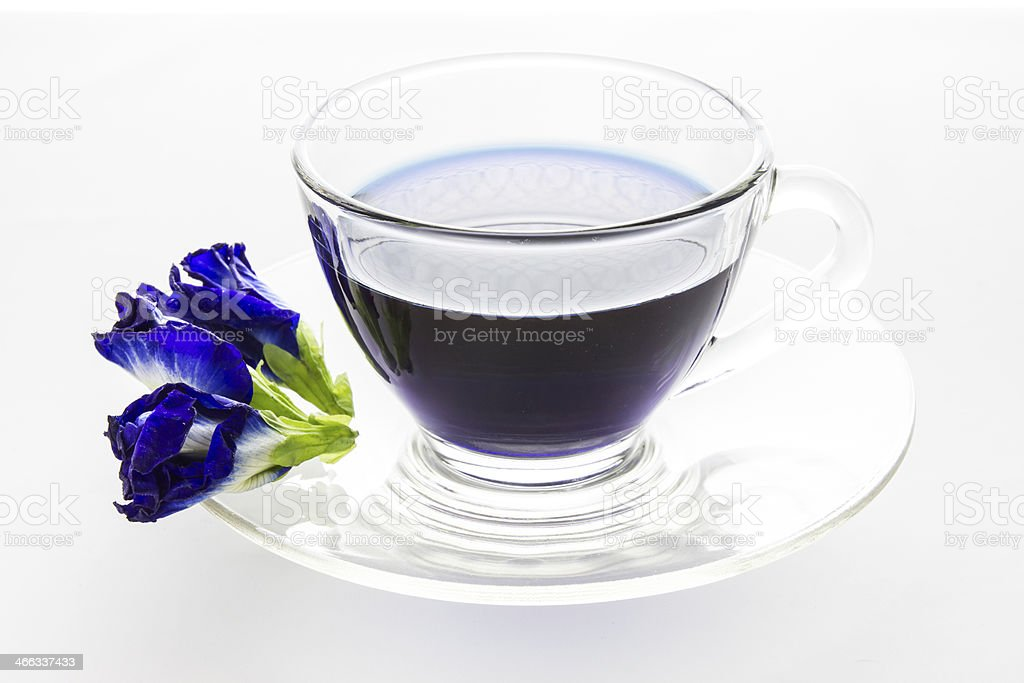 Butterfly pea in cup isolated on white background stock photo