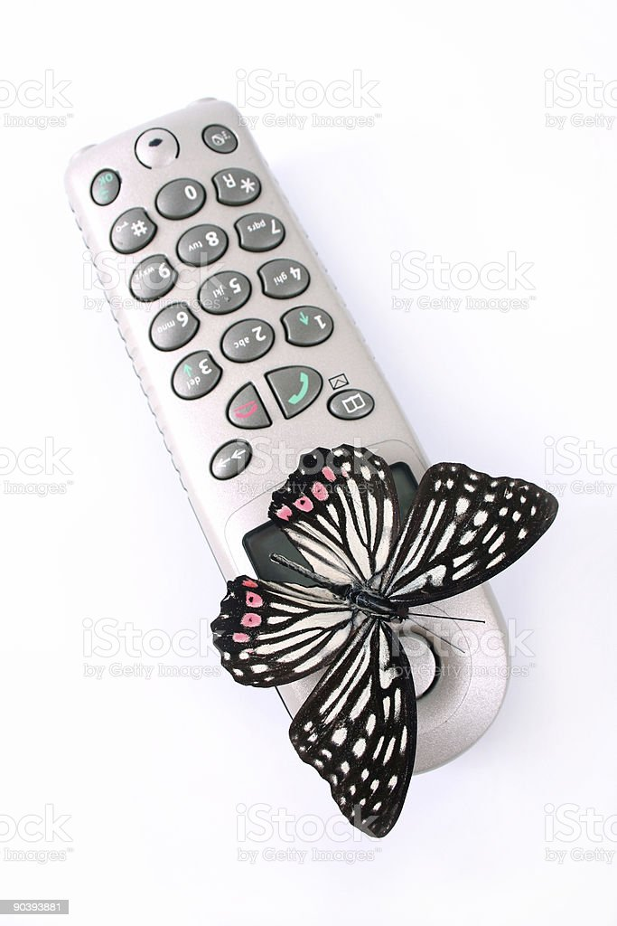 Butterfly using phone royalty-free stock photo