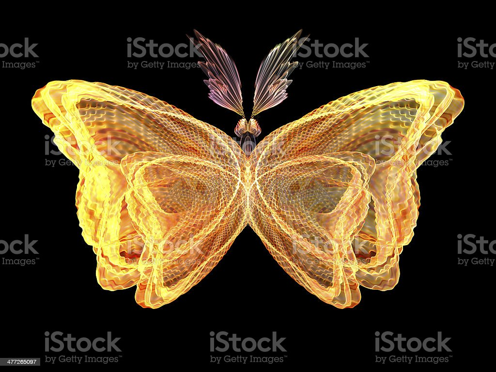 Butterfly Visualization royalty-free stock photo