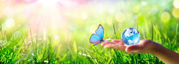Schmetterling mit Glaskugel - Love and Care Environment Konzept – Foto
