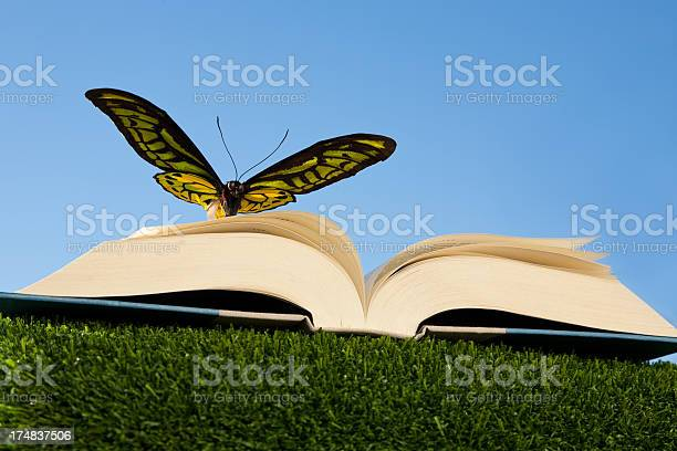 Butterflys spread wings matching a books open pages picture id174837506?b=1&k=6&m=174837506&s=612x612&h=htnfhvzrlwle 7nqvnhujv9drjrmiku7d mqyw4ymle=