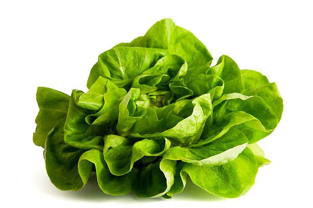 Grüner Salat isoliert auf weiss. – Foto