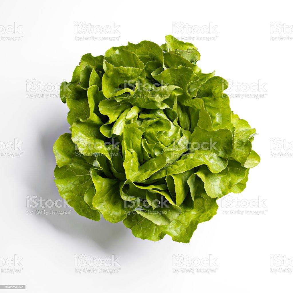 Kopfsalat-Salat auf weißem Hintergrund – Foto