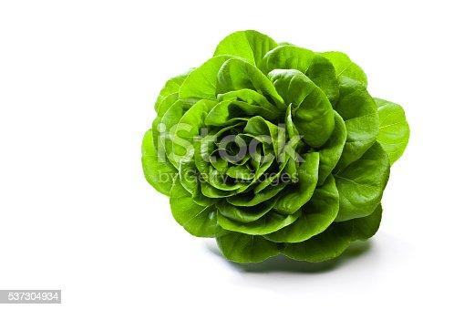 Fresh organic butterhead lettuce isolated on white background