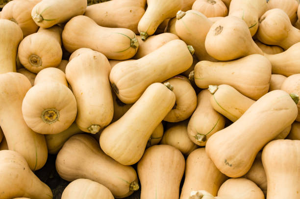 Butternut squash at the market stock photo
