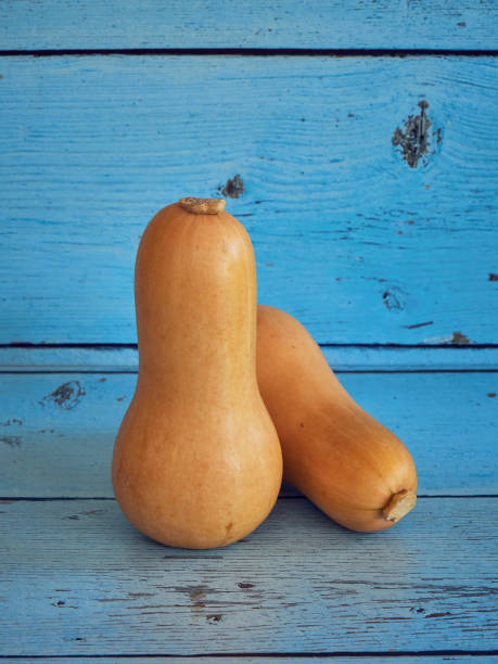 Butternut squash on blue background stock photo