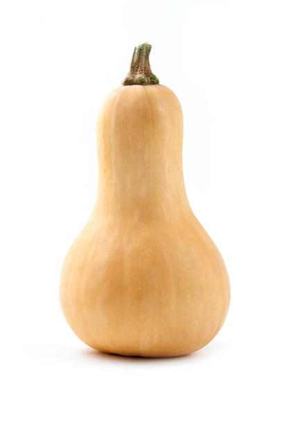 butternut squash - squash komkommerfamilie stockfoto's en -beelden