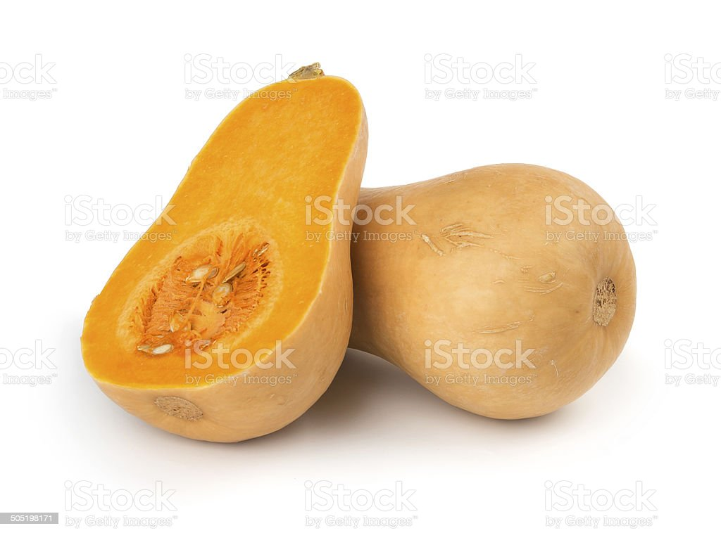 Butternut squash stock photo